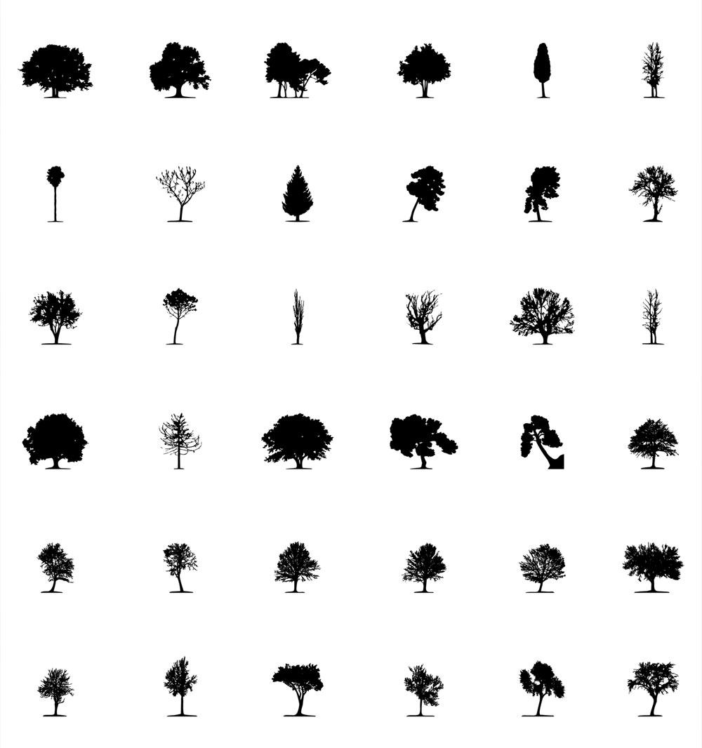 tree04_02
